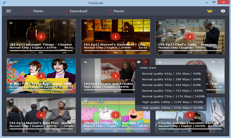 Screenshot of FlixGrab 1.0.3.1224